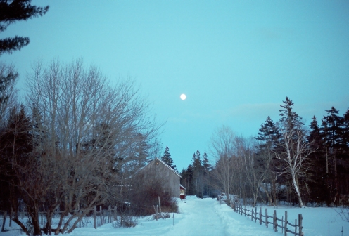 winter20161-104
