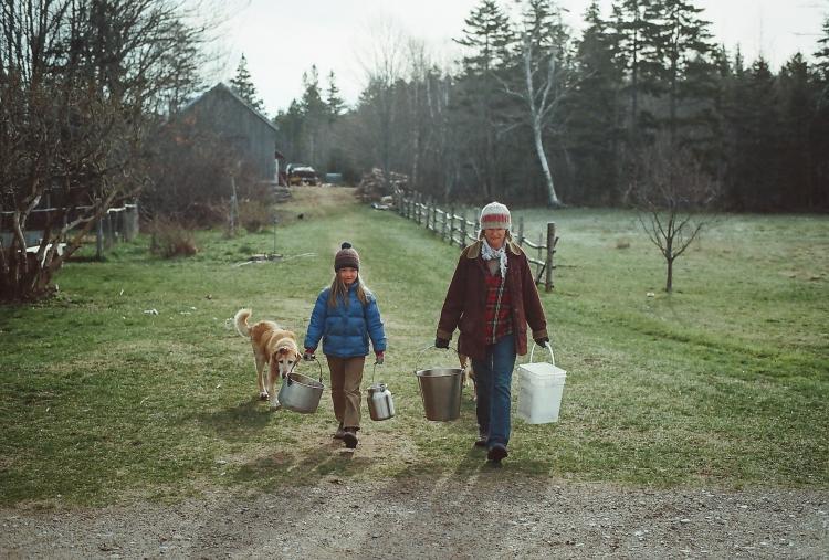 springfilm16-69