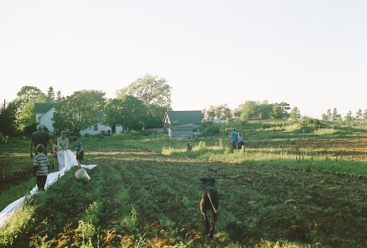 smrfilm16-136